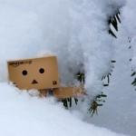 Schnee …